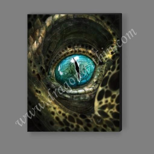 Eye of the Dragon Canvas Print