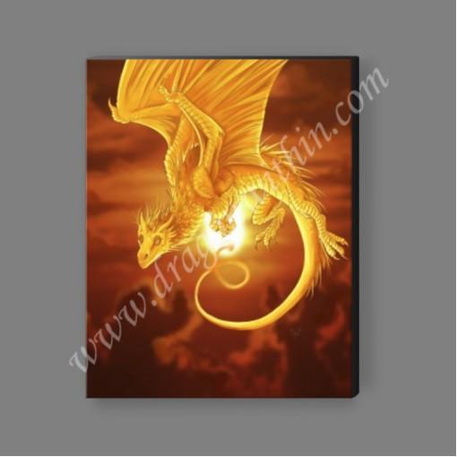 Sun Dragon Canvas Print