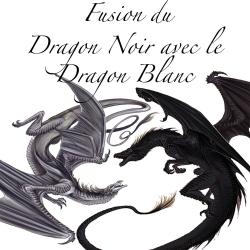 Fusion du Dragon Noir avec le Dragon Blanc